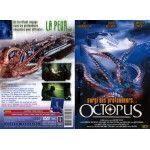Octopus (Occasion)
