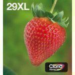 Epson C13T29964511 Negro, Cian, Magenta, Amarillo cartucho de tinta