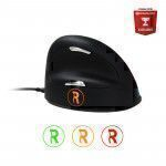 R-Go Tools R-Go Break HE Mouse, Ergonomic mouse, Anti-RSI software, Medium (165-195mm), Right Handed, Wired